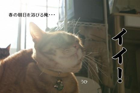 Dsc01202_2